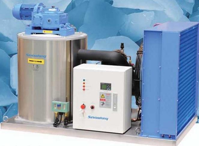 Льдогенератор чешуйчатого льда (пресная вода) Snowkey F30A