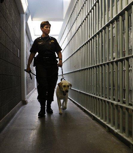 women prison essays