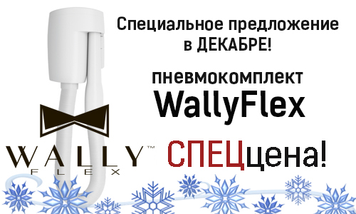 Специальное предложение на  WallyFlex!