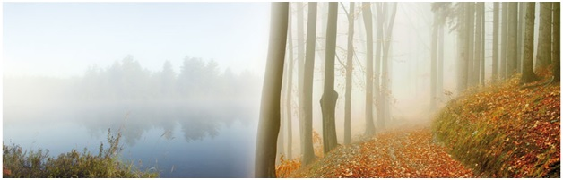 Развенчание мифов о влажности